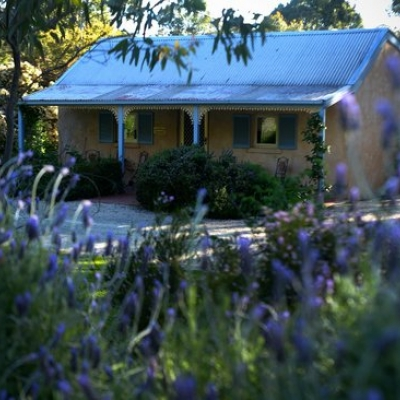 Riesling Trail & Clare Valley Cottage's