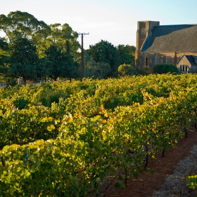 From wineries to prehistoric monsters: tour South Australia's Clare Valley