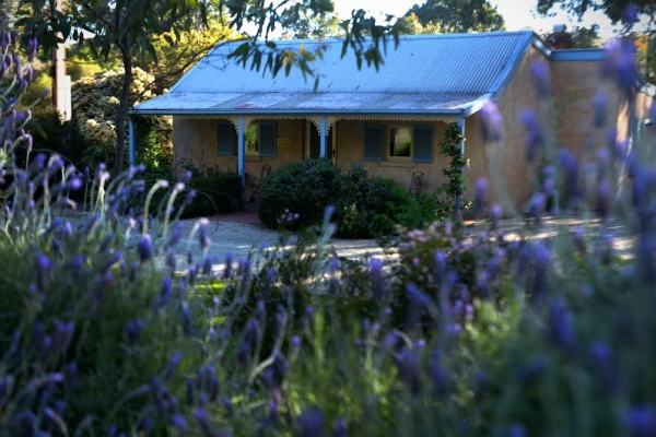 Riesling Trail & Clare Valley Cottages